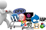Website Development Services in USA