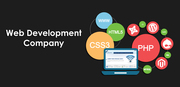User Prospective Company for Web Development Services